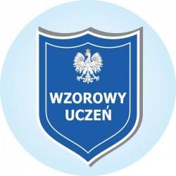 Z-21 WZOROWY UCZEŃ