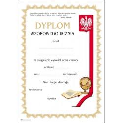 78 dyplom wzorowego ucznia