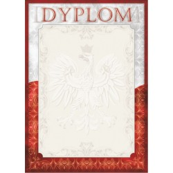 D01 dyplom Polska